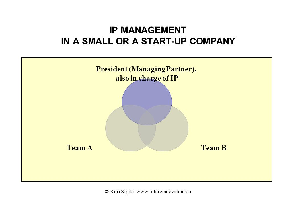 IP MANAGEMENT IN A SMALL OR A START-UP COMPANY
