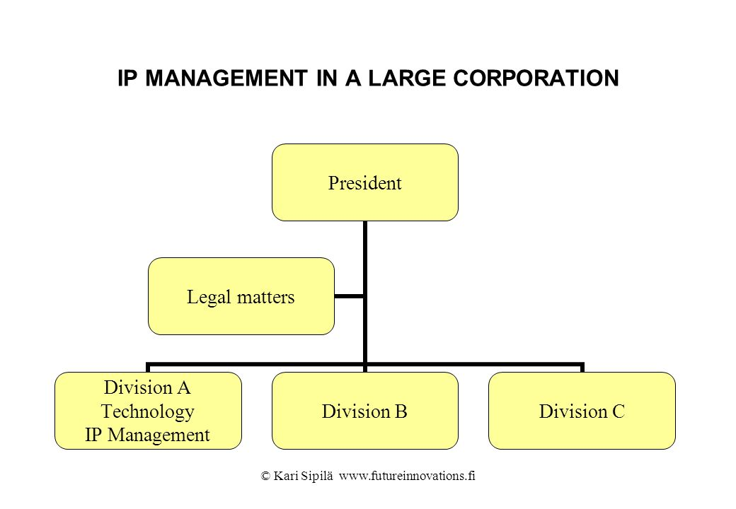 IP MANAGEMENT IN A LARGE CORPORATION