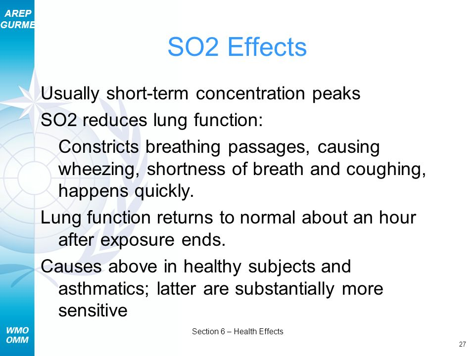 Section 6 – Health Effects