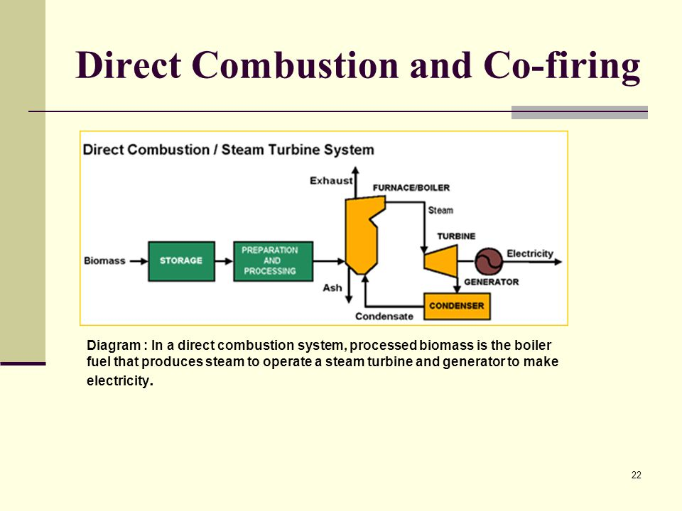 Direct Combustion and Co-firing
