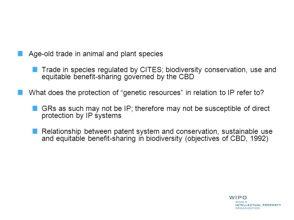 Age-old trade in animal and plant species