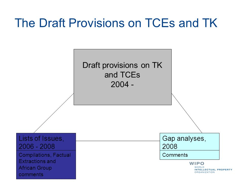 The Draft Provisions on TCEs and TK
