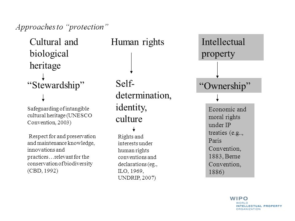 Cultural and biological heritage Human rights Intellectual property