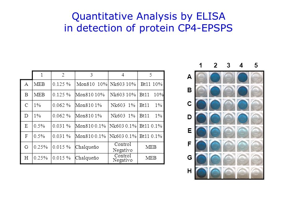 Quantitative Analysis by ELISA in detection of protein CP4-EPSPS