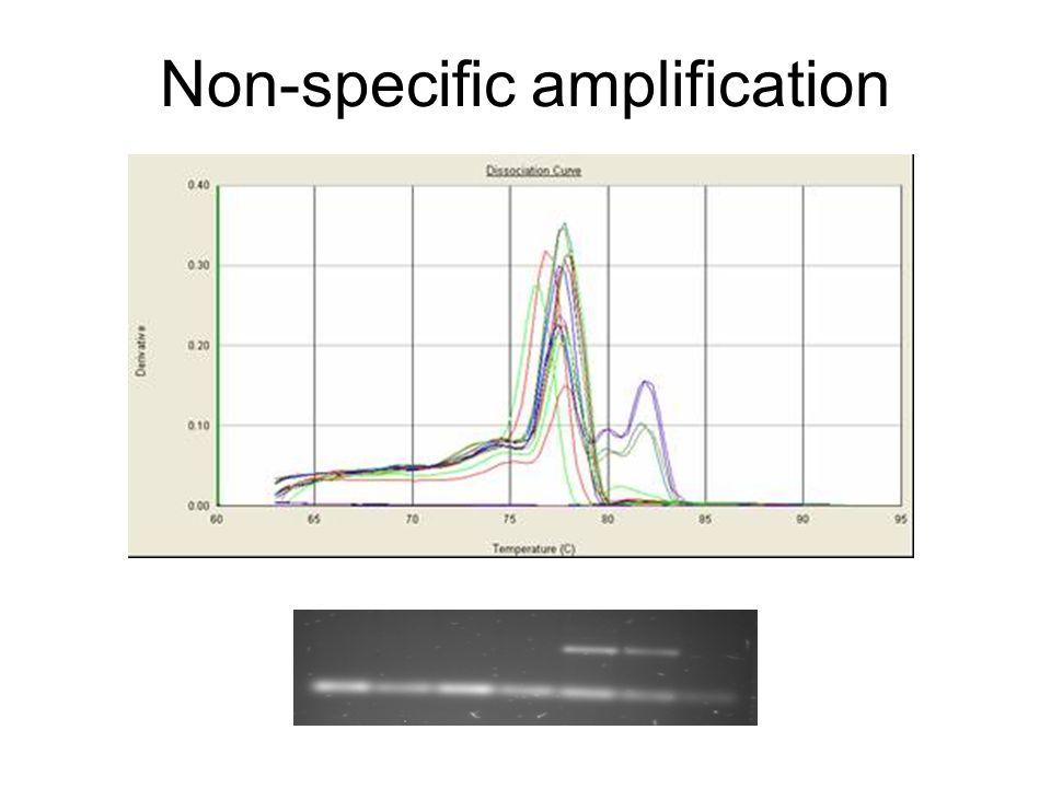 Non-specific amplification