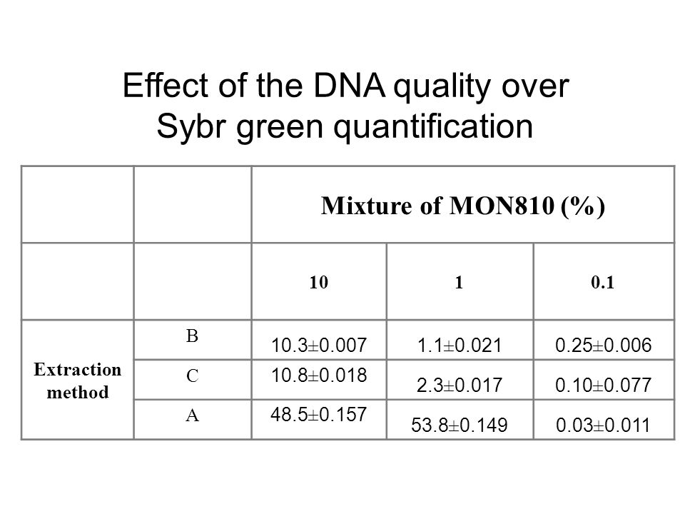Effect of the DNA quality over Sybr green quantification
