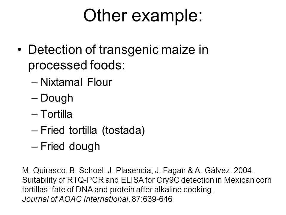 Other example: Detection of transgenic maize in processed foods: