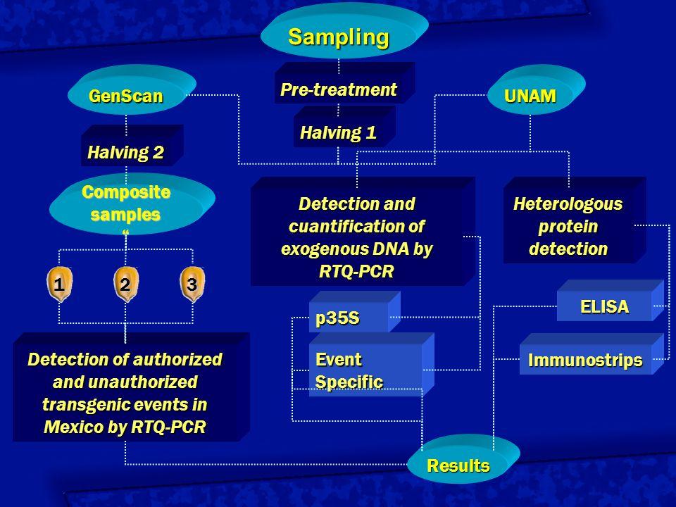 Sampling GenScan Pre-treatment UNAM Halving 1 Halving 2