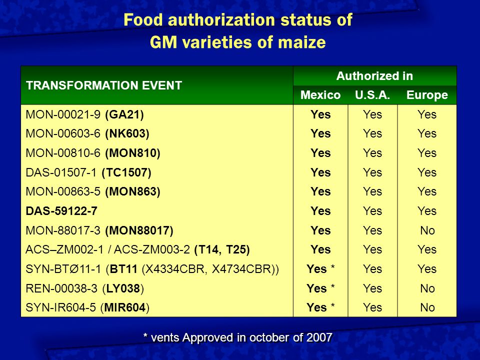 Food authorization status of GM varieties of maize