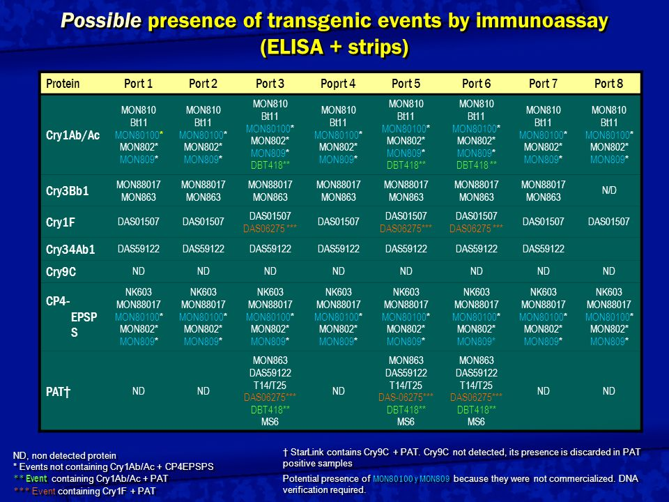 Possible presence of transgenic events by immunoassay (ELISA + strips)