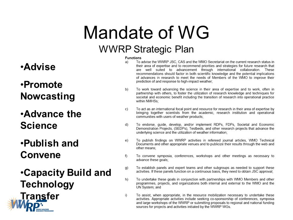 Mandate of WG WWRP Strategic Plan