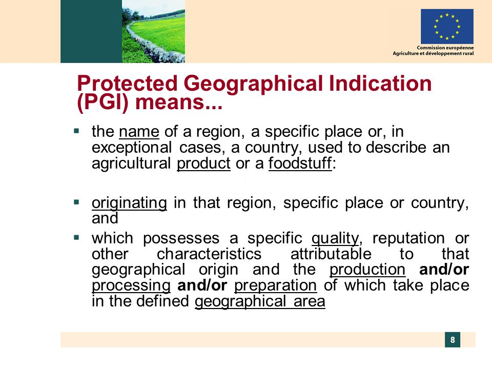 Protected Geographical Indication (PGI) means...