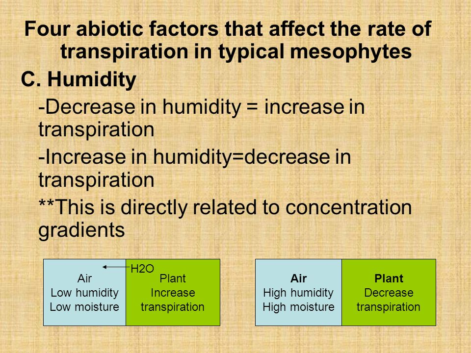 factors effecting transpiration rates Factors affecting transpiration the rate of transpiration in plants is affected by several factors increasing the rate of diffusion of water vapour from the.