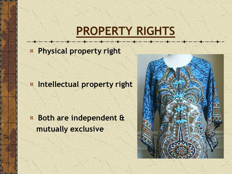 PROPERTY RIGHTS Physical property right Intellectual property right