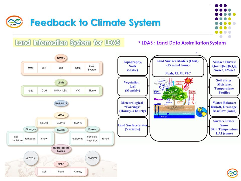 Feedback to Climate System