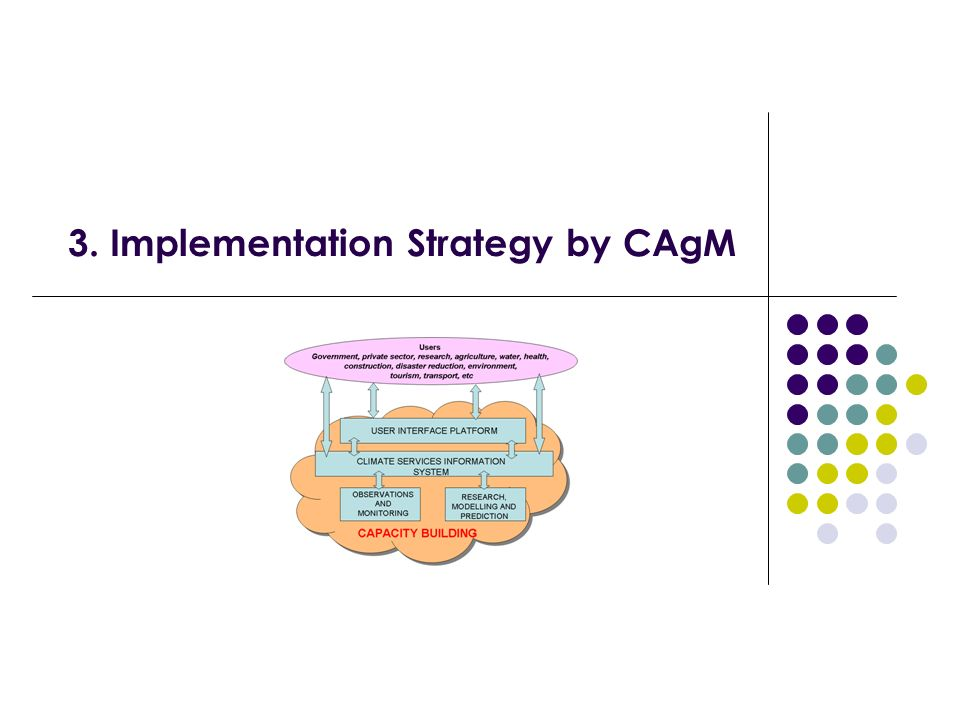 3. Implementation Strategy by CAgM