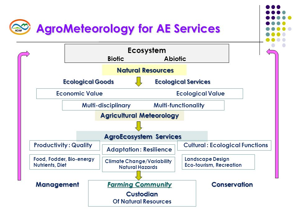 AgroMeteorology for AE Services