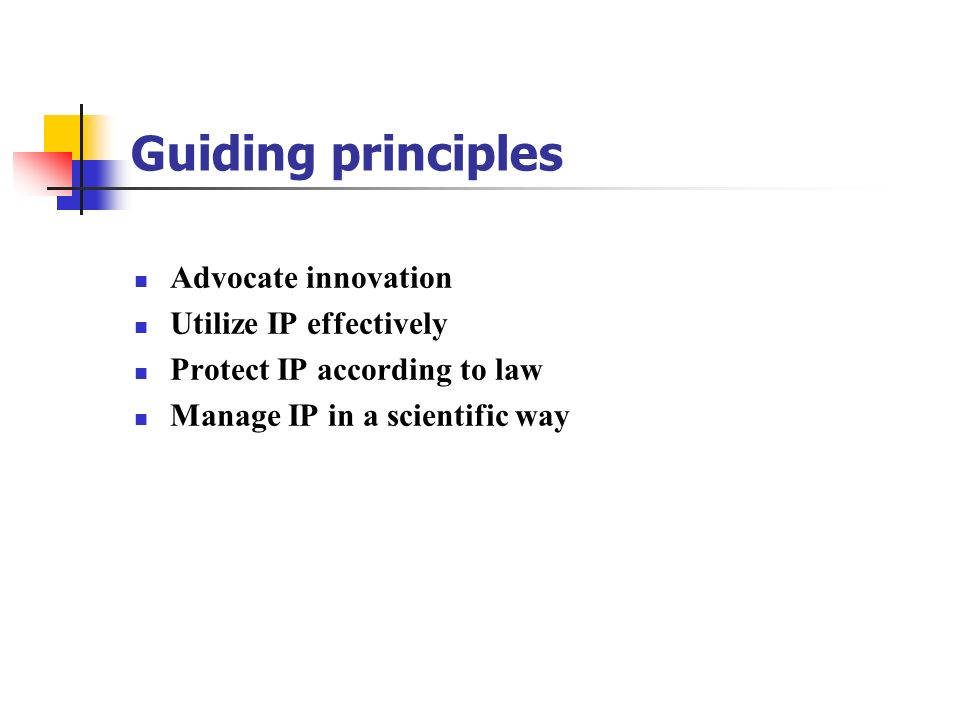 Guiding principles Advocate innovation Utilize IP effectively
