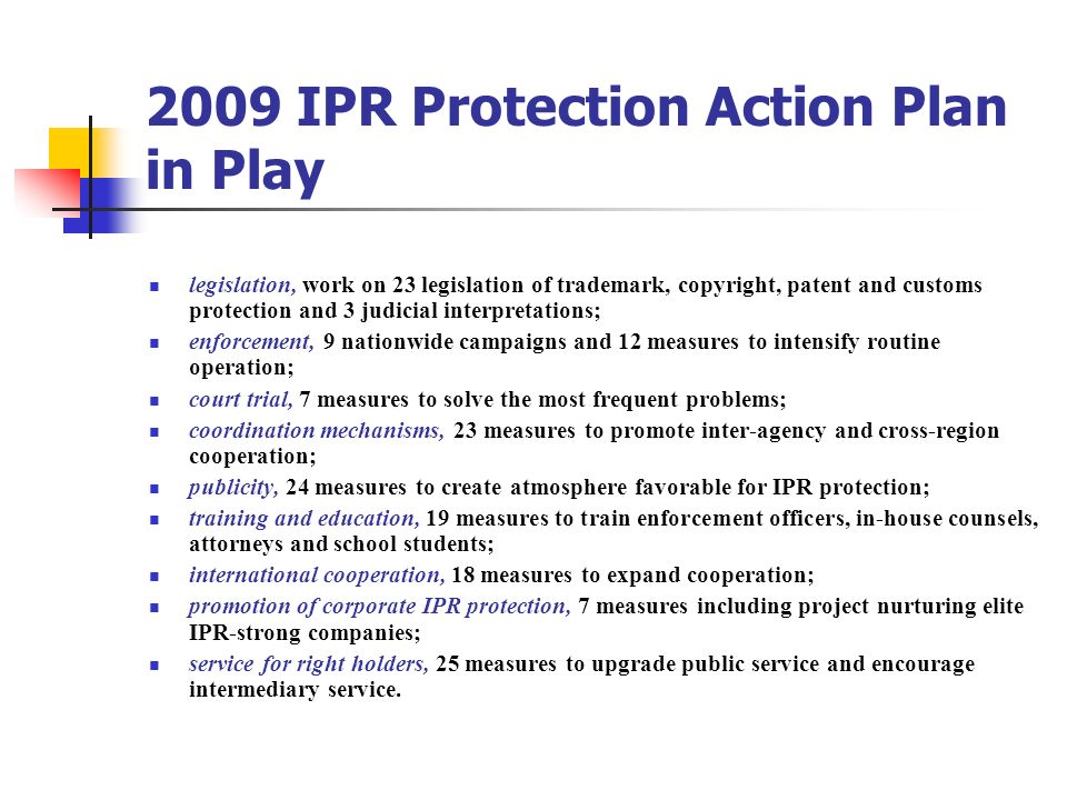 2009 IPR Protection Action Plan in Play