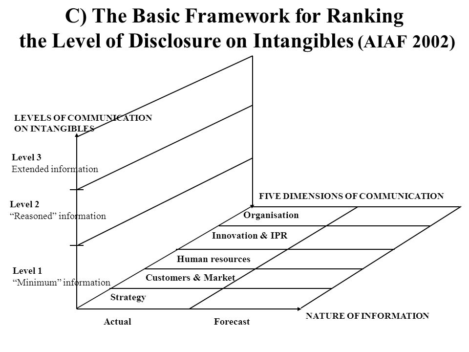 C) The Basic Framework for Ranking the Level of Disclosure on Intangibles (AIAF 2002)