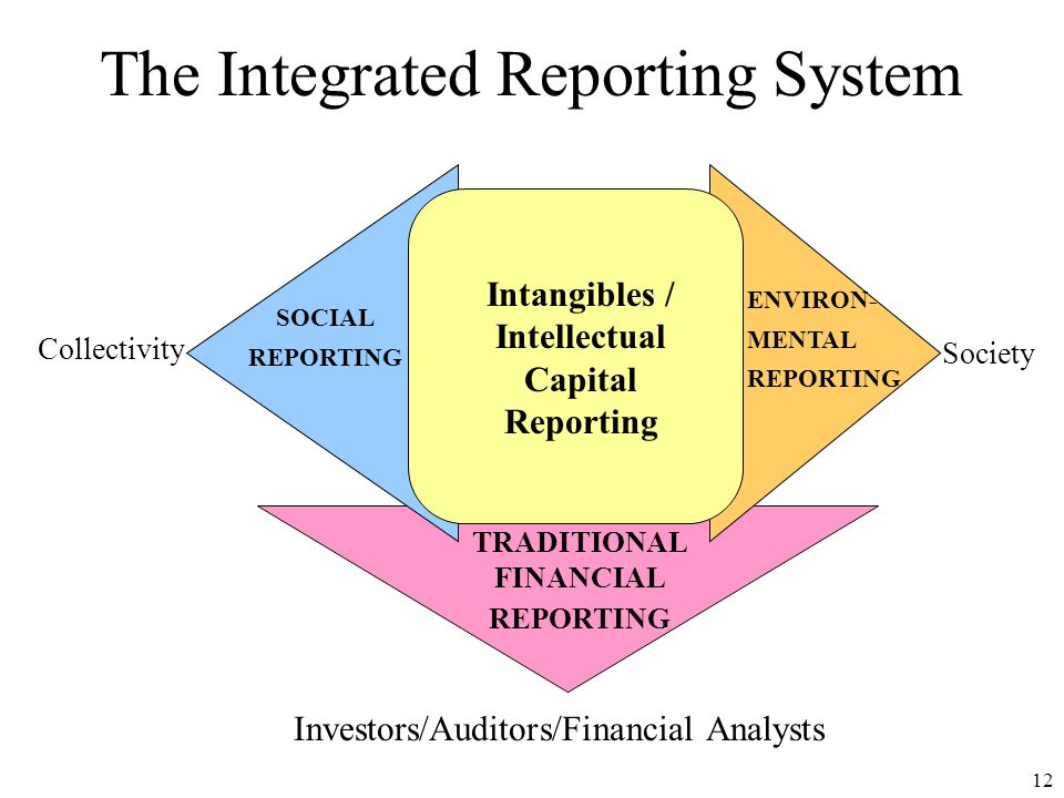 The Integrated Reporting System