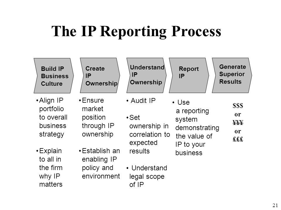 The IP Reporting Process