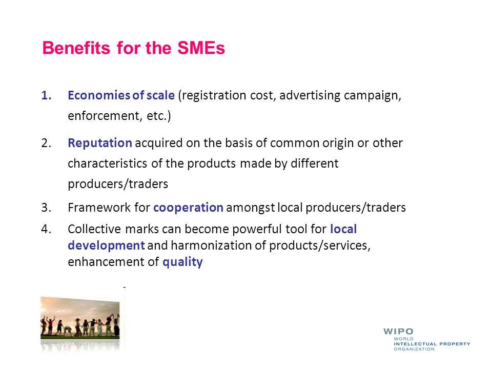 Benefits for the SMEs Economies of scale (registration cost, advertising campaign, enforcement, etc.)