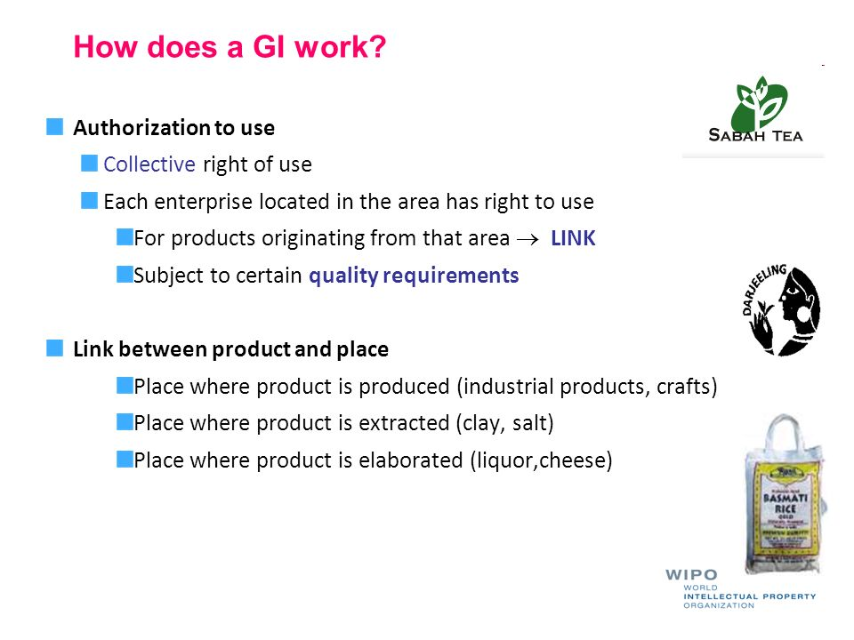 How does a GI work Authorization to use Collective right of use