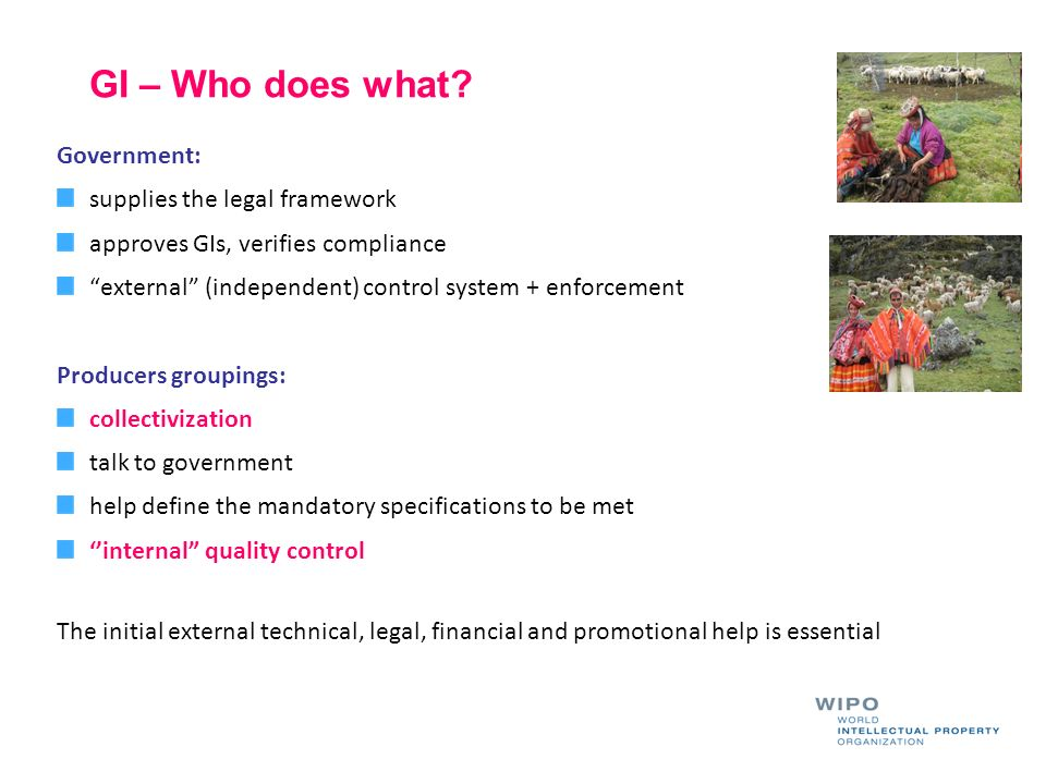 GI – Who does what Government: supplies the legal framework