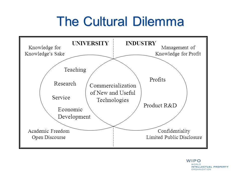 The Cultural Dilemma UNIVERSITY INDUSTRY