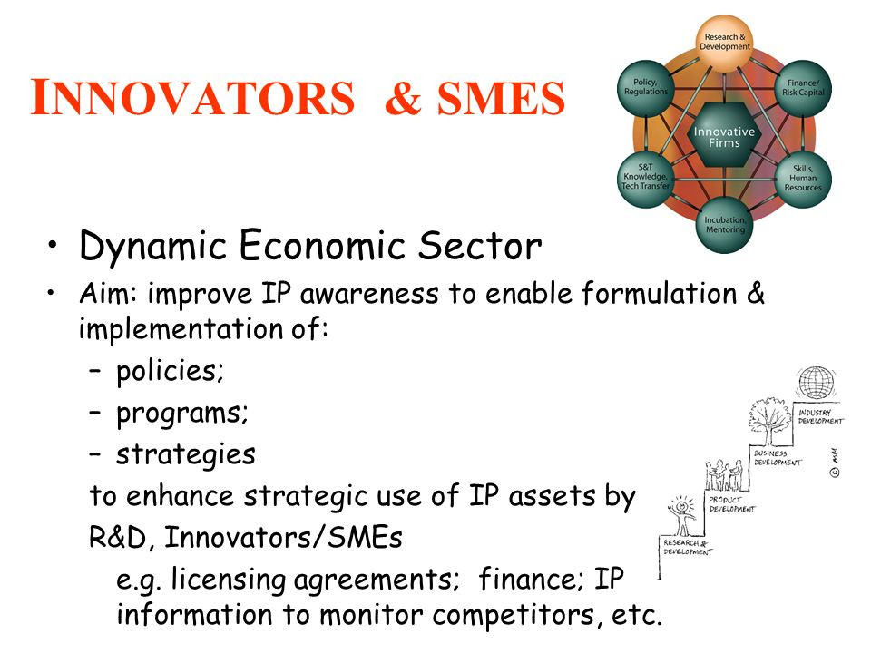 INNOVATORS & SMES Dynamic Economic Sector