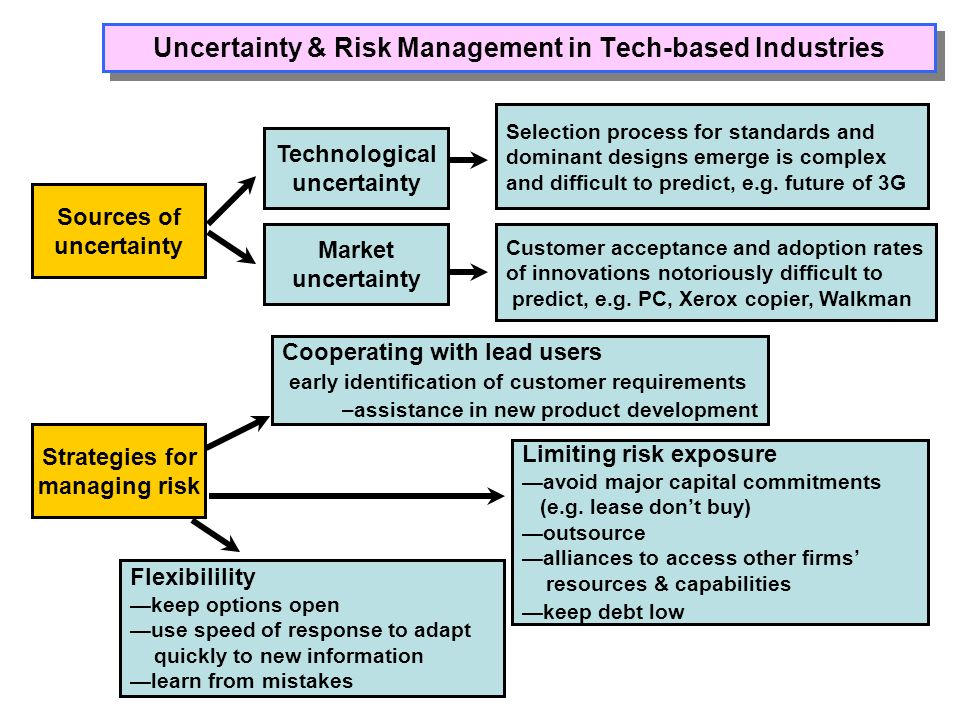 Uncertainty & Risk Management in Tech-based Industries