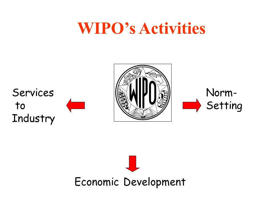 WIPO's Activities Services to Industry Norm-Setting