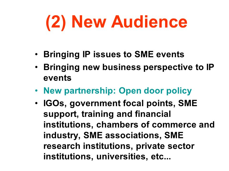 (2) New Audience Bringing IP issues to SME events