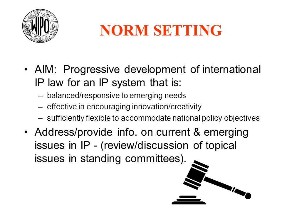 NORM SETTING AIM: Progressive development of international IP law for an IP system that is: balanced/responsive to emerging needs.