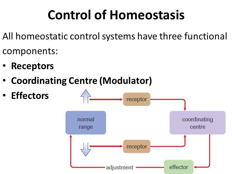 homeostasis regulation Homeostasis: negative feedback, body temperature,  (the control center in the brain for the regulation of homeostasis),  negative feedback, body temperature.