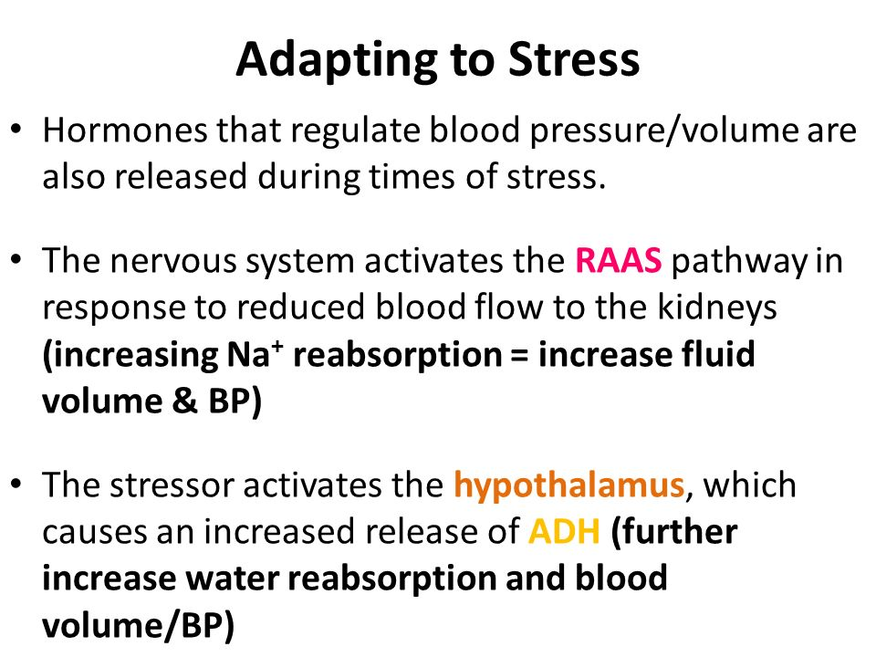 Adapting to Stress Hormones that regulate blood pressure/volume are also released during times of stress.