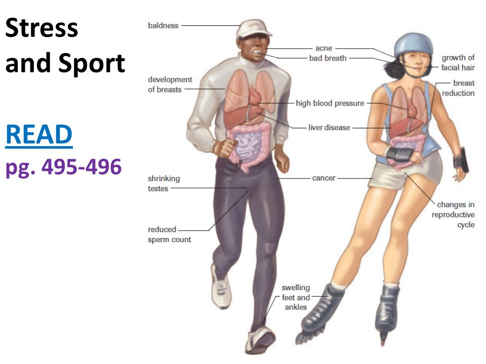 Stress and Sport READ pg