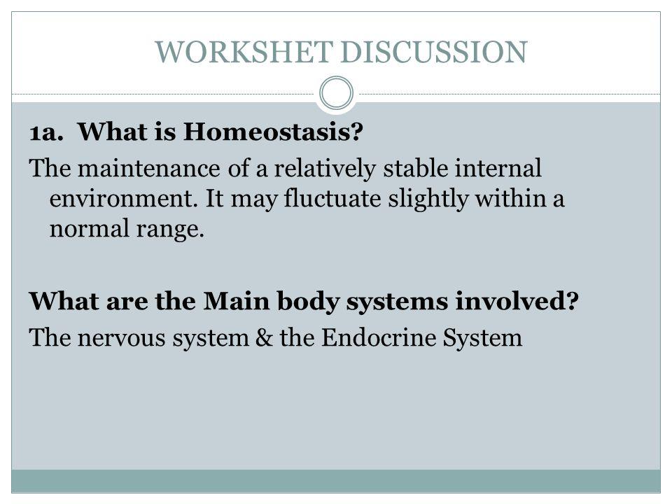 the molecules of cells worksheet review ppt video online download. Black Bedroom Furniture Sets. Home Design Ideas