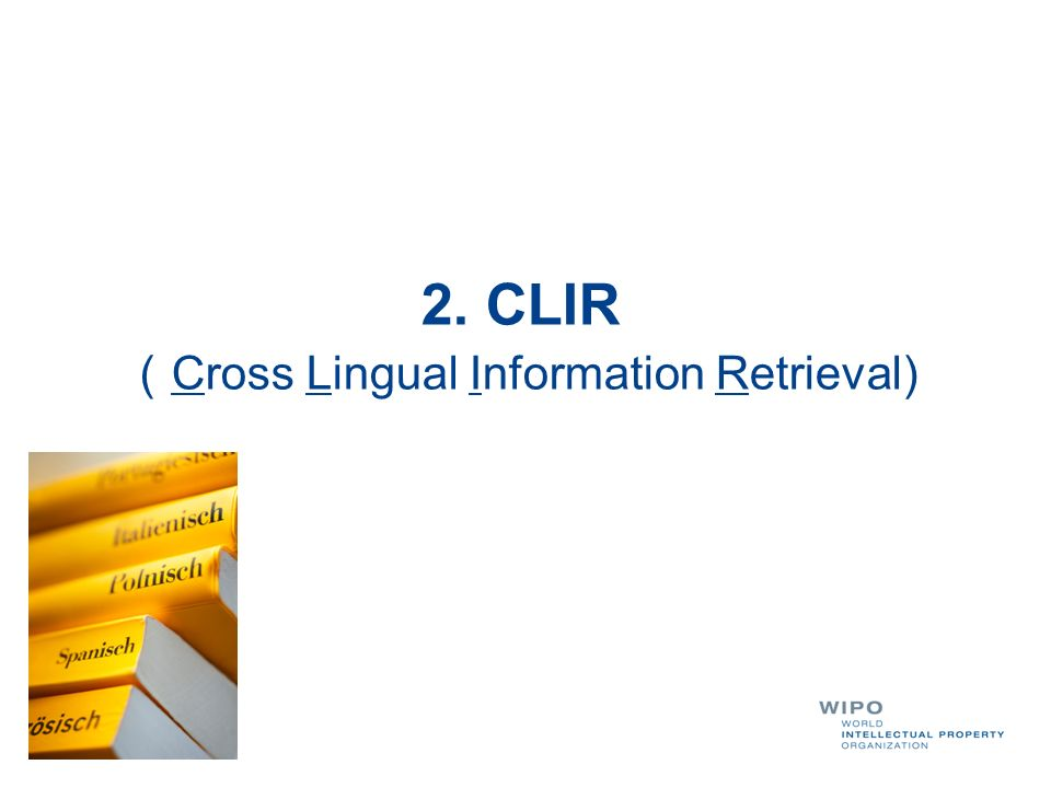 (Cross Lingual Information Retrieval)