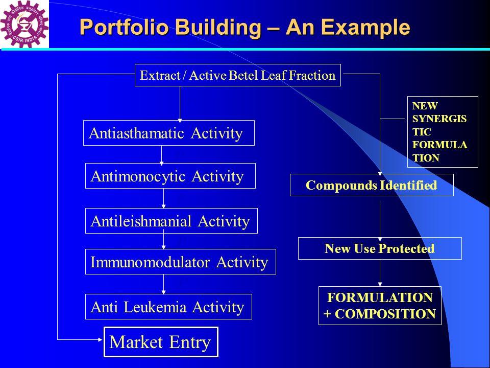Portfolio Building – An Example