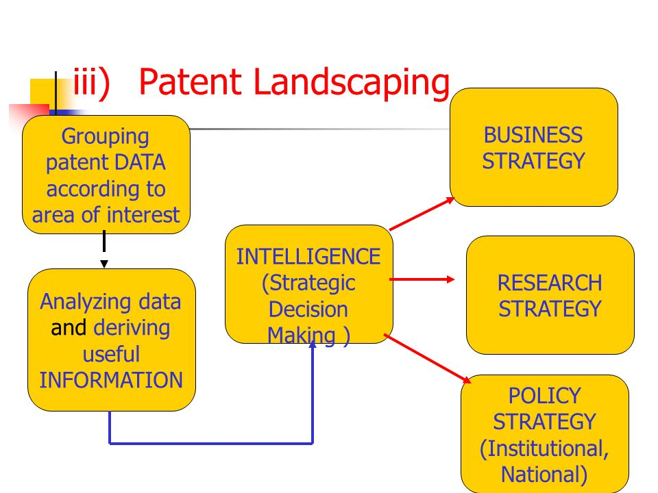 iii) Patent Landscaping