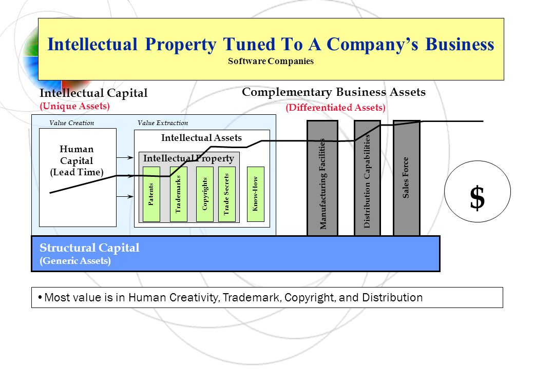 Intellectual Property Tuned To A Company's Business Software Companies