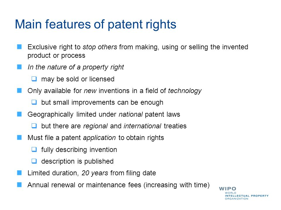 Main features of patent rights