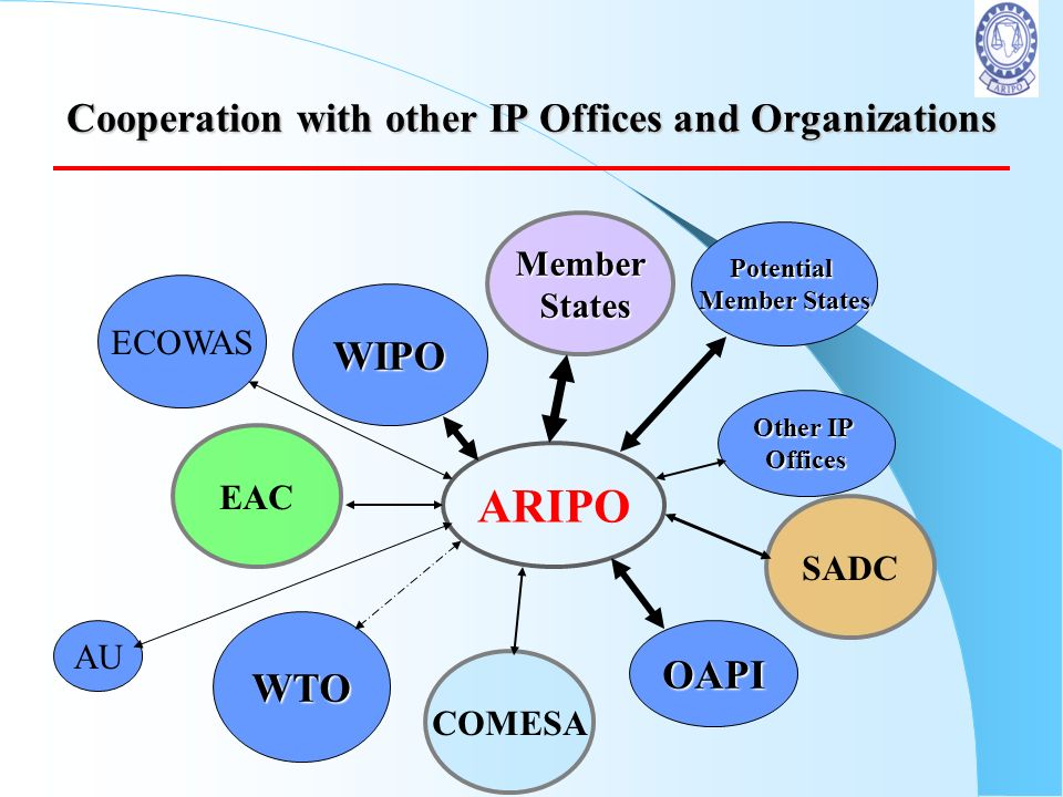Cooperation with other IP Offices and Organizations