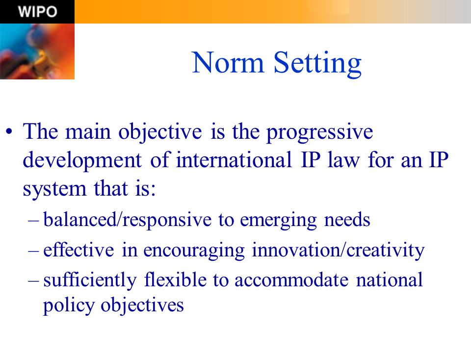 Norm Setting The main objective is the progressive development of international IP law for an IP system that is: