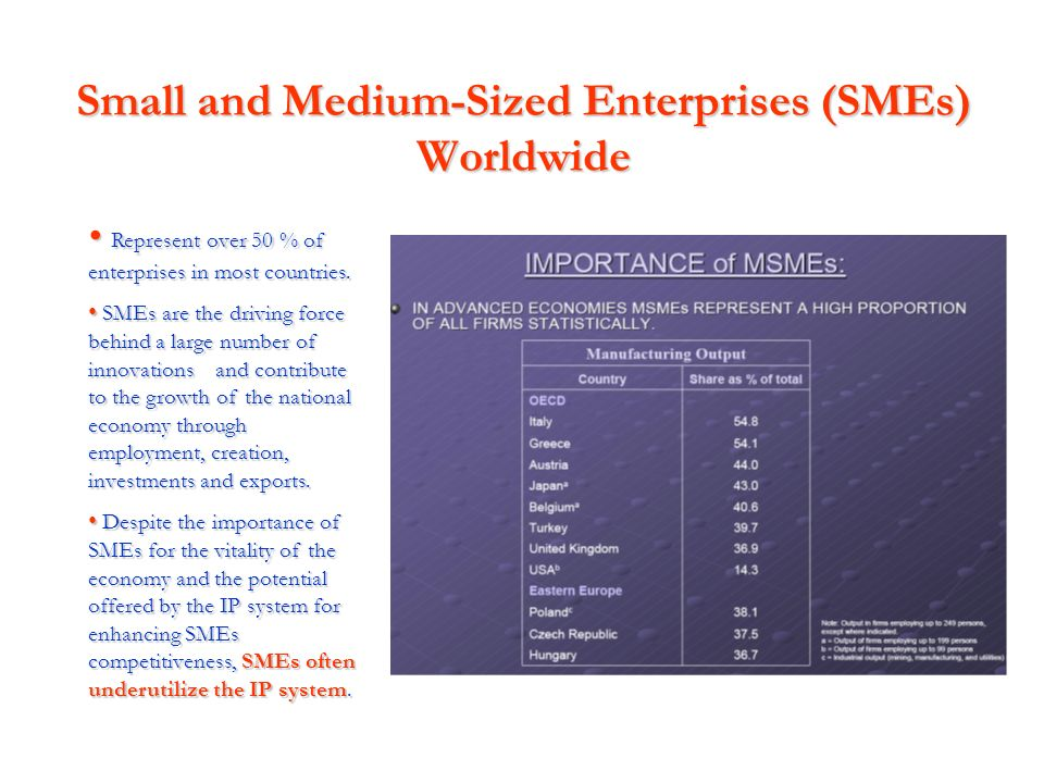 Small and Medium-Sized Enterprises (SMEs) Worldwide