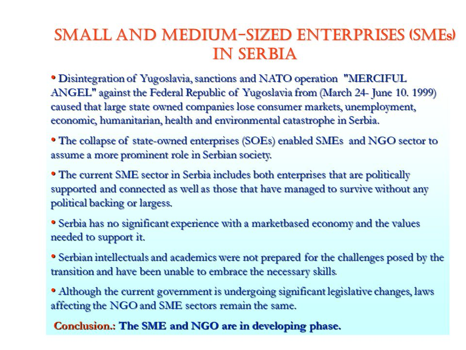 Small and Medium-Sized Enterprises (SMEs) IN SERBIA