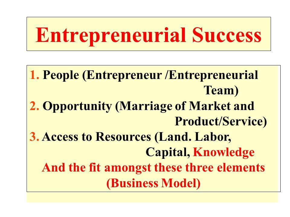 Entrepreneurial Success