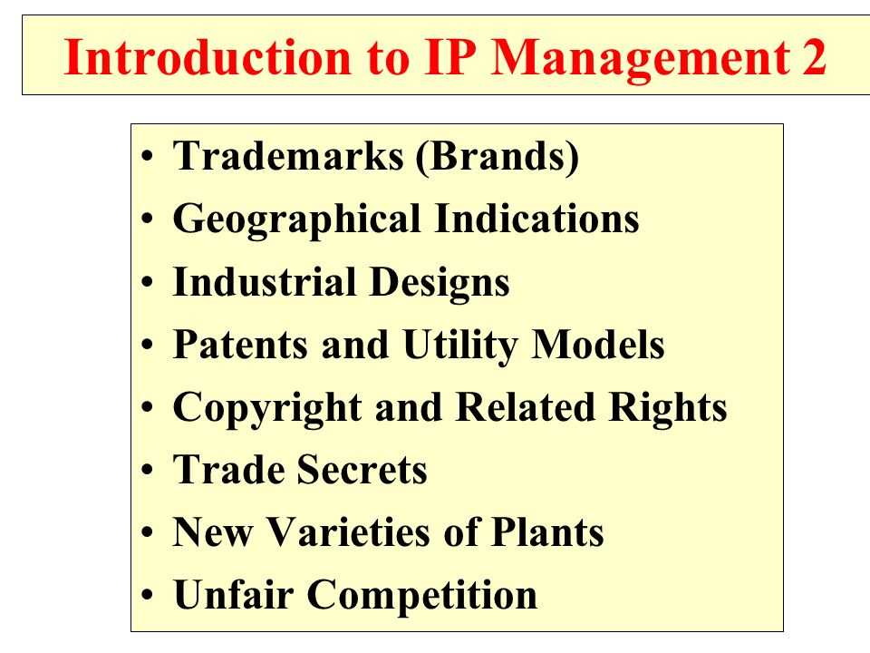 Introduction to IP Management 2